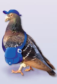Pombo-Correio